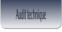 Audit technique .